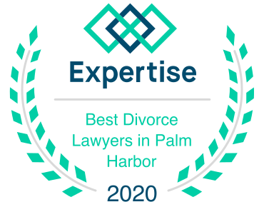 Expertise - Best Divorce Lawyer in Palm Harbor